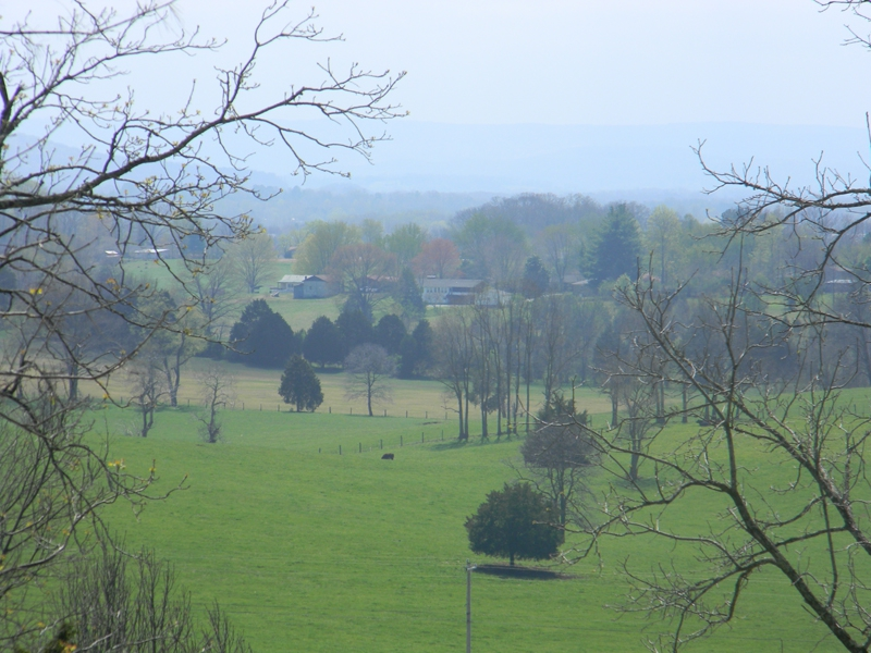 perfect Tennessee farm land