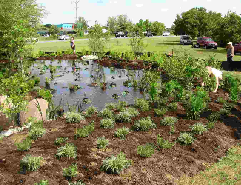 Crofton Rain Garden, after planting (copyright Joanne O'Malley)