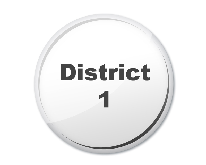 district 1 button