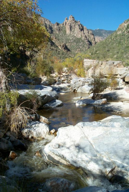 Sabino Creek in Sabino Canyon, Tucson Arizona