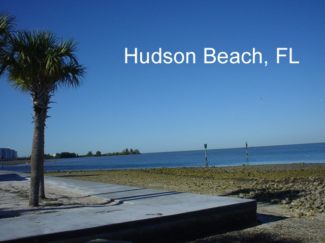 Weekend fun on the beach in hudson florida for Hudson ribs and fish