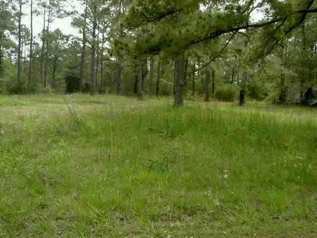 vacant land pic stolen via google images