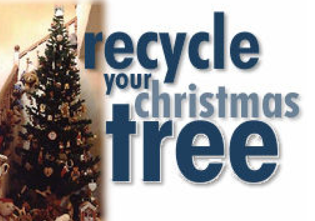 Recycle Your Christmas Tree - Denver Metro