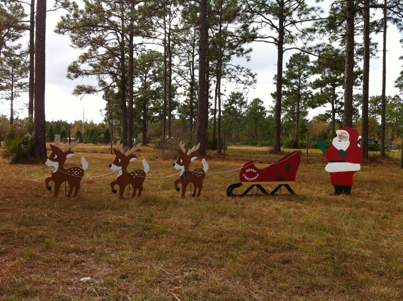 Songer's Christmas Tree Farm in Middleburg, Florida