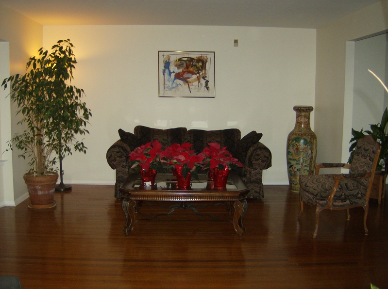 16 tracey, living room, leander mcclain realtor, cherry hill nj