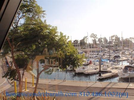 Playa Vista a Luxury Condominiums Endre Barath,Jr