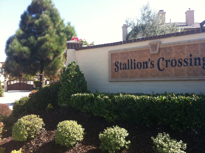 stallions crossing gated homes view the comps homes for sale in