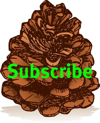 Subscribe to my Blog