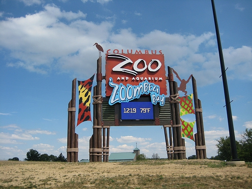 Exotic animals leaving columbus zoo today for Fish store columbus ohio