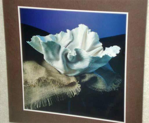Jed ceramic photo