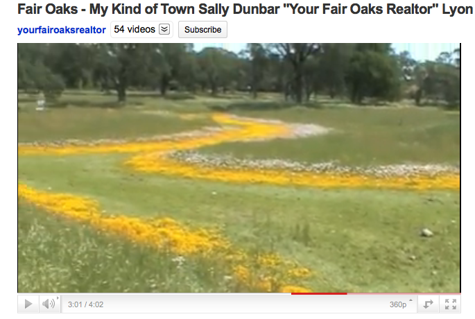 Vernal Pools, Phoenix Park Fair Oaks in full bloom