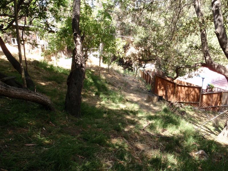 laurel canyon land endre barath