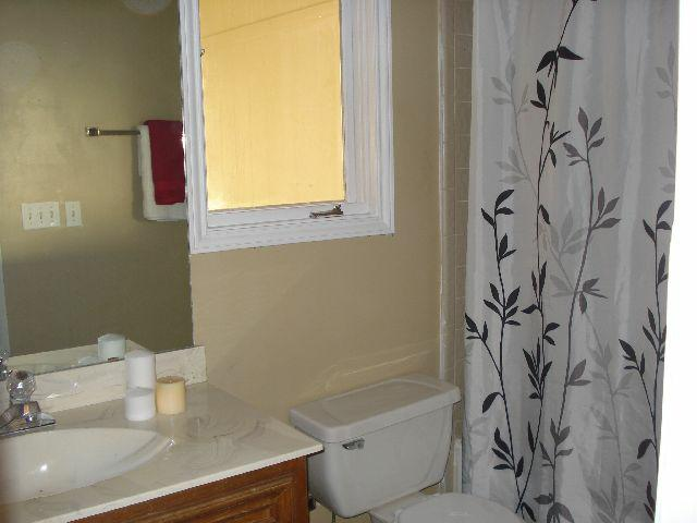 Shower Curtains And Staging