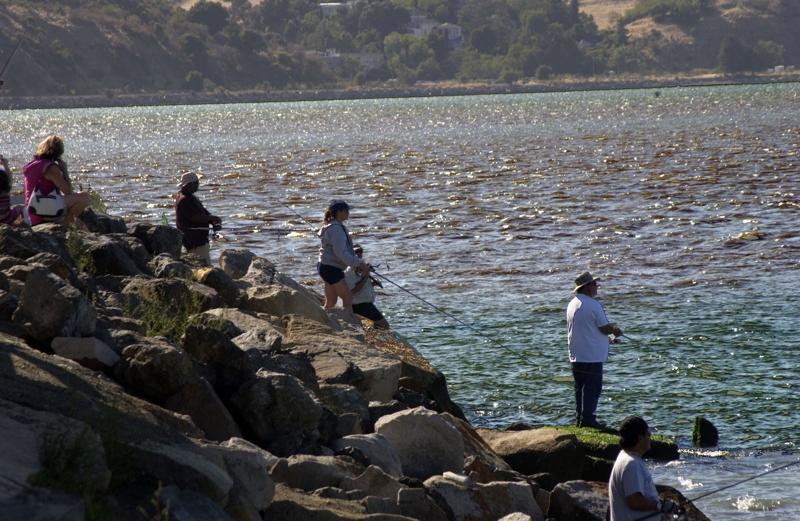 Benicia salmon season starts by earl miller for Benicia fishing report