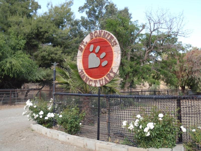 St Bonnie's Sanctuary