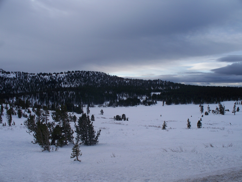 Snowshoeing area of Mt. Rose