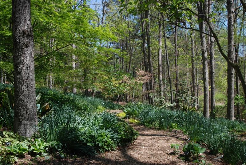 The South Carolina Botanical Garden In Clemson Sc