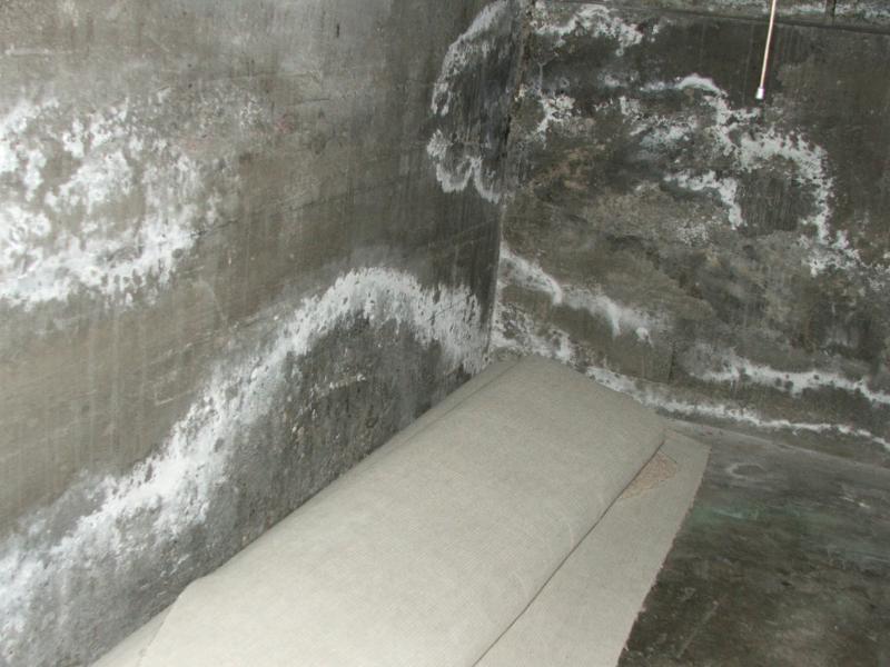 basement efflorescence