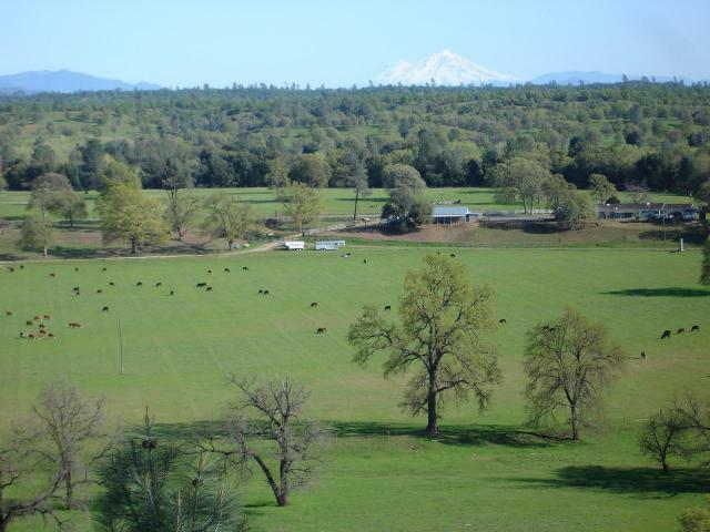 ar125347946125558 Western Ranch and Land   Shasta County CA   Cottonwood Creek Cattle Ranch!
