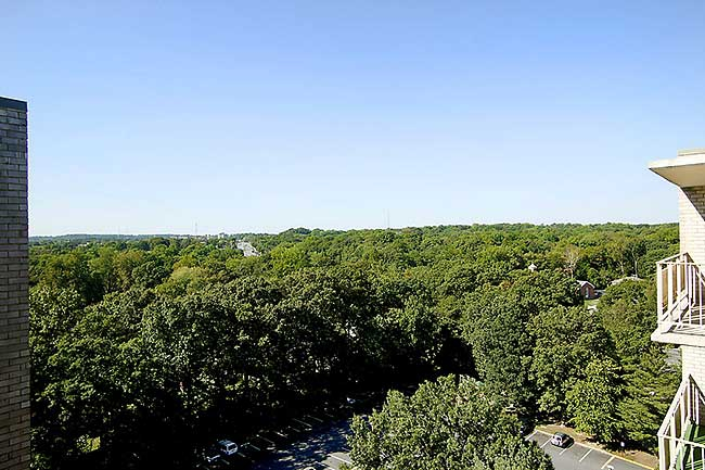 View from Takoma Overlook