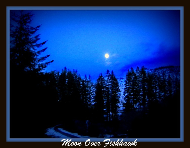 Winter Moon Over Fishhawk Lake