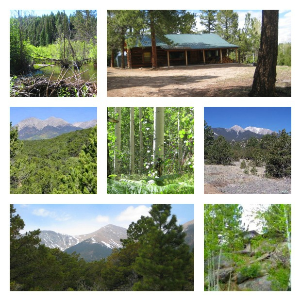 Chaffee County Real Estate: Mountains