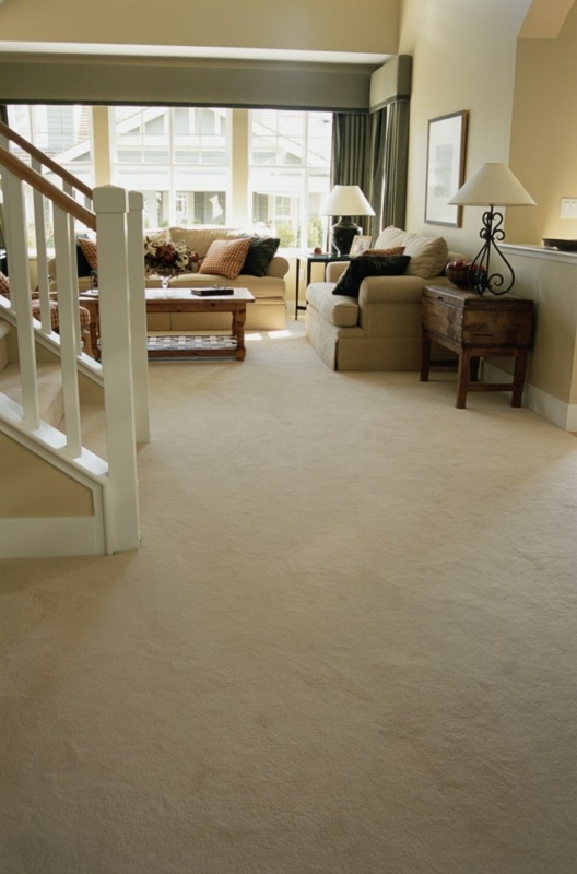 carpet in westchester with stain protection