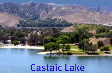 What's Available for sale in Castaic, Ca?