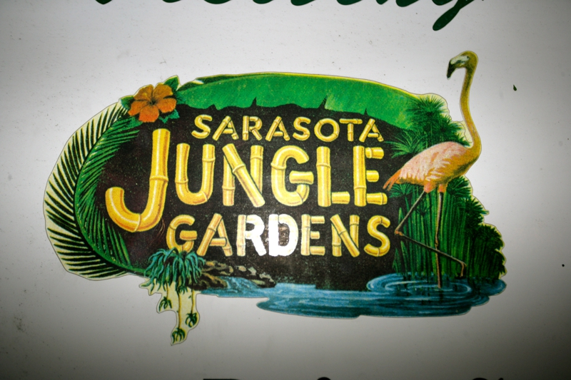 Manatee County Real Estate News Sarasota Jungle Gardens Holiday Light Event 2010