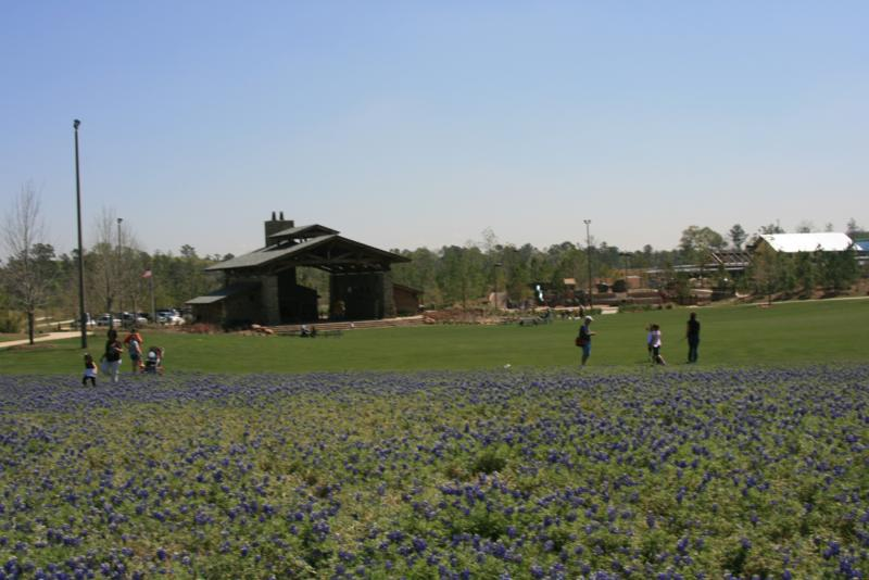 Rob Fleming Park Pavillion and bluebonnet meadow