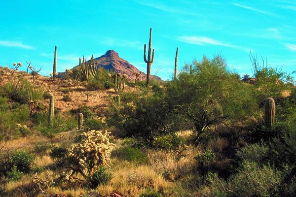 Buying a home in anthem country club in anthem arizona for Best mountain towns to raise a family