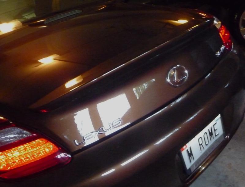 M Rome License Tag