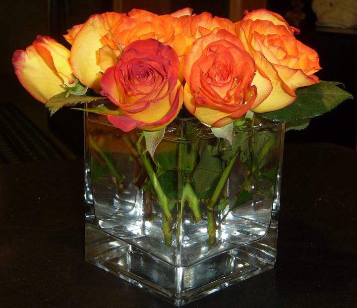 Orange roses in square glass vase