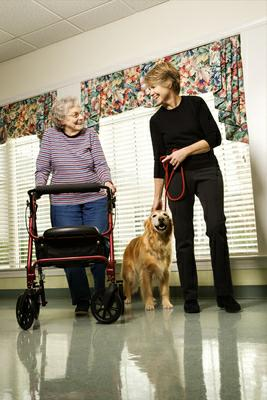 Older woman with walker and dog