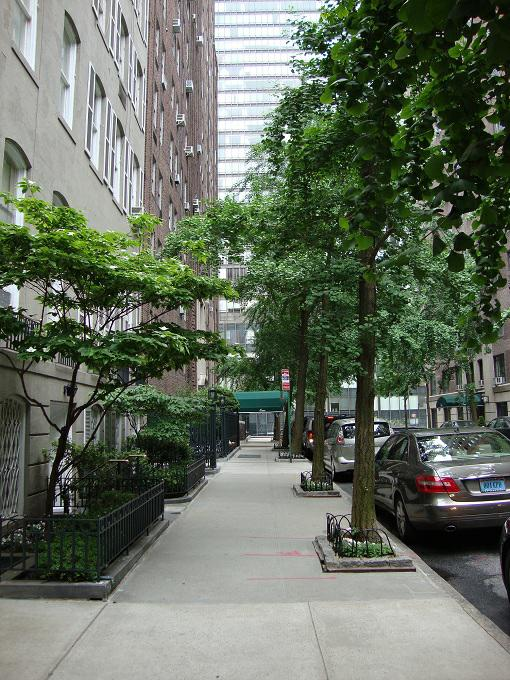 tudor city in NYC feng shui consultant laura cerrano of feng shui long island ny
