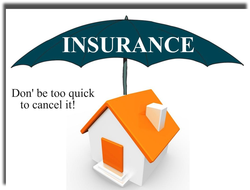 Orbitz Rent Car Insurance