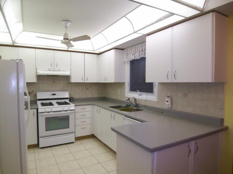 Formica kitchen cabinets for Can i paint over laminate kitchen cabinets