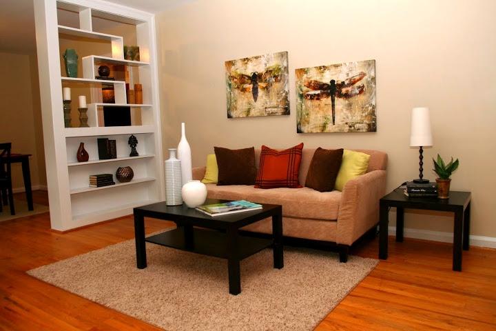 Staged bookshelves in living room