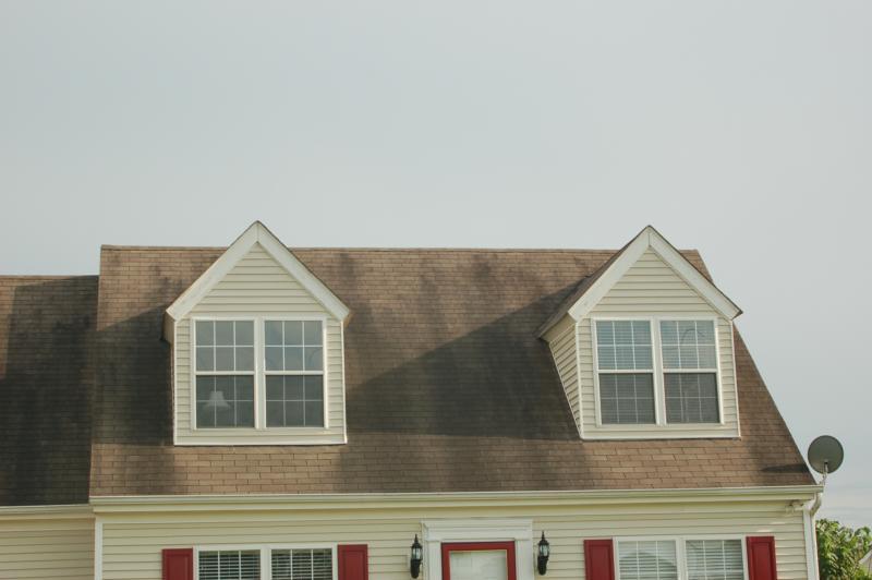 Dirty Roof Shingles
