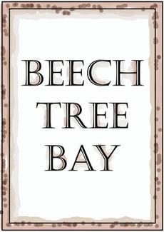 Beech Tree Bay at Lake Norman
