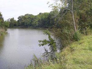 Land For Sale In Chicot County Arkansas