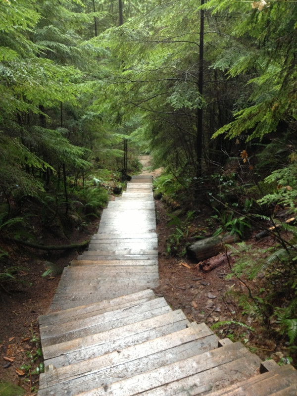 Lynn Canyon Stairs