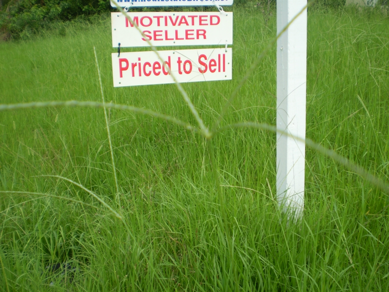Cutting the Grass Could Help it Sell Quicker by Sandy Shores Broker Associate