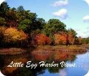 Little Egg Harbor Homes & Living