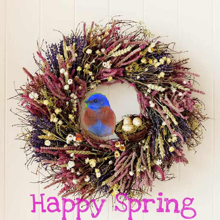 Why is March 20th is Called 'The First Day of Spring..Fun Facts?