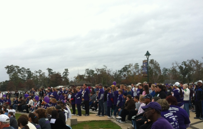 Lake Charles Purple Stride 2011