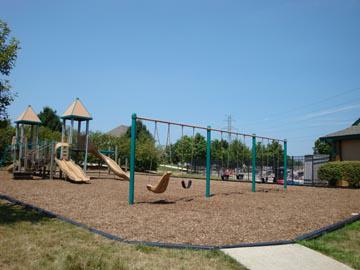 Playgrounds, Nature areas, Soccer Field & More