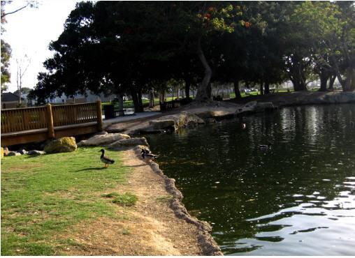 Tewinkle Park Pond Costa Mesa