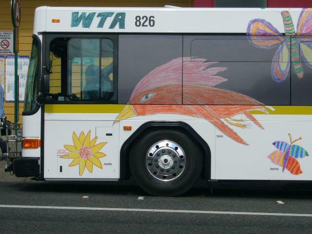 Bellingham bus