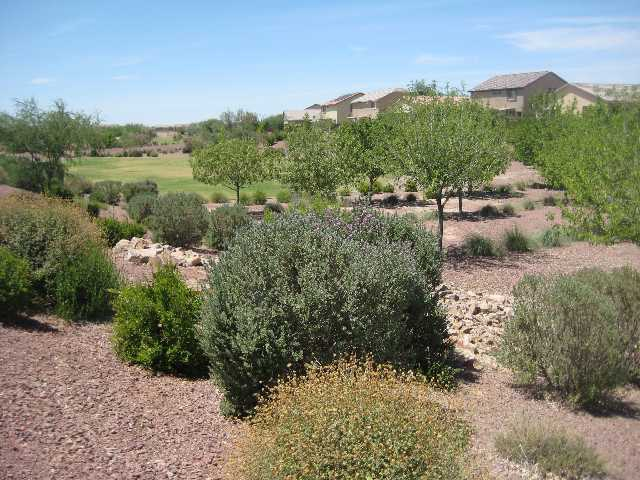 Homes for sale in Gladden Farms